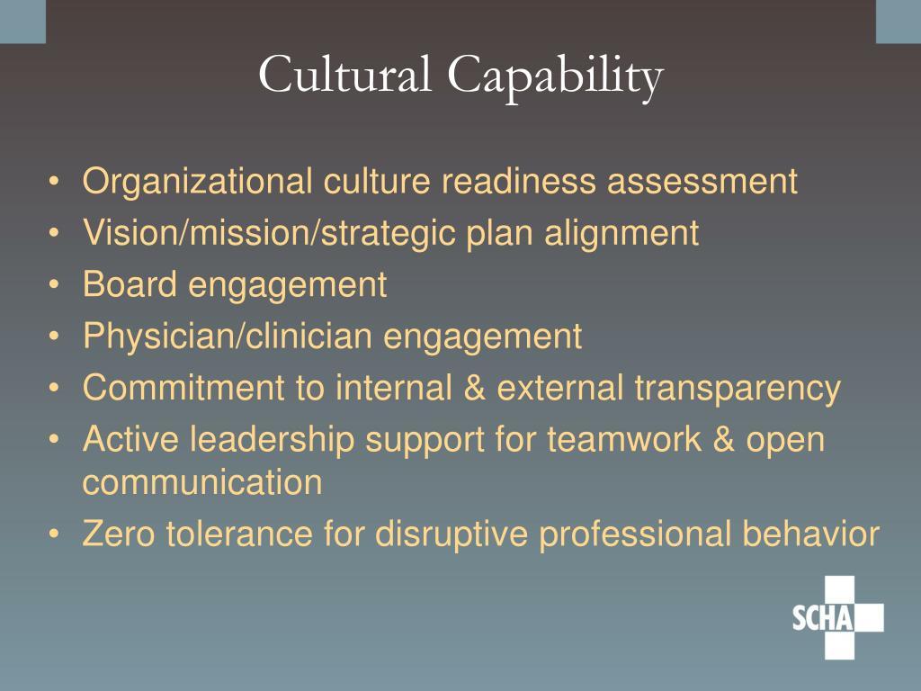 Cultural Capability