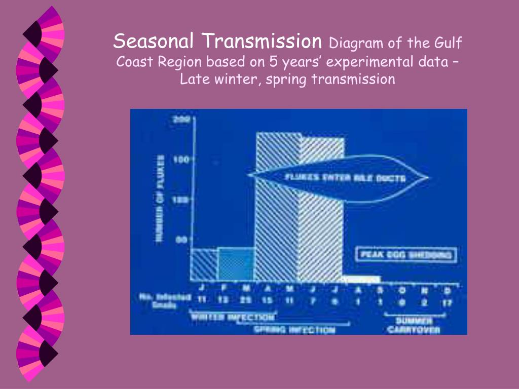 Seasonal Transmission