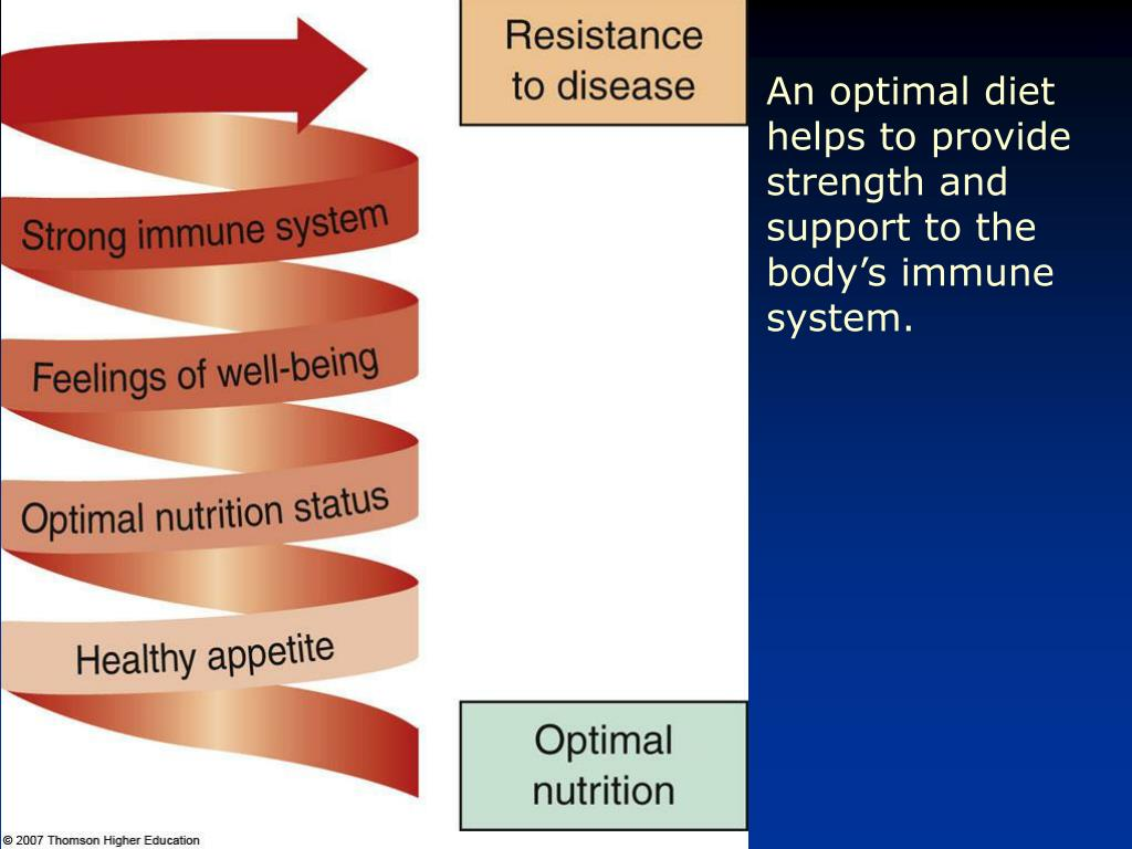 An optimal diet helps to provide strength and support to the body's immune system.