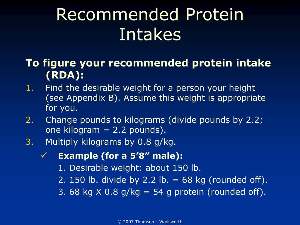 Recommended Protein Intakes