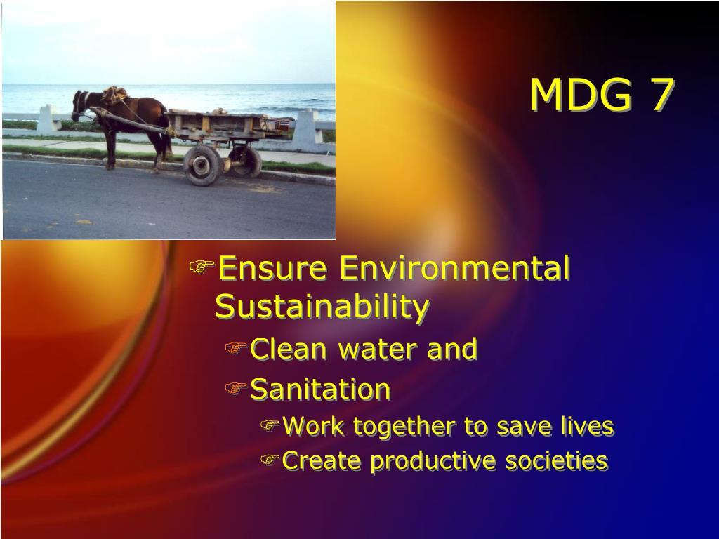 MDG 7