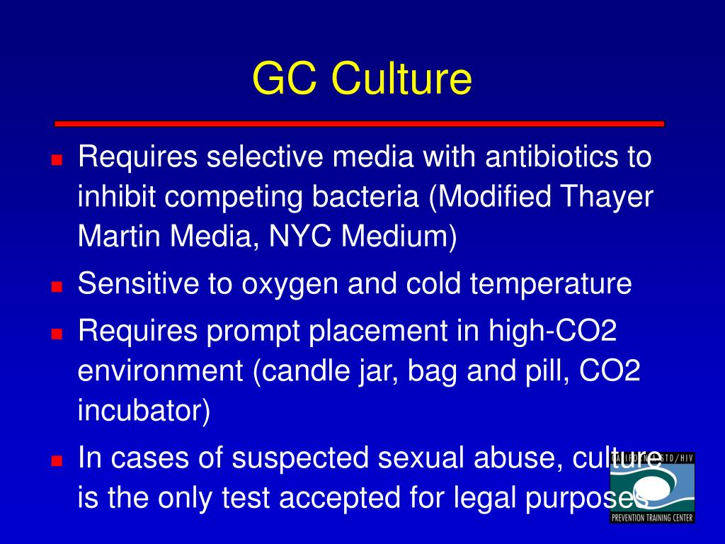 GC Culture