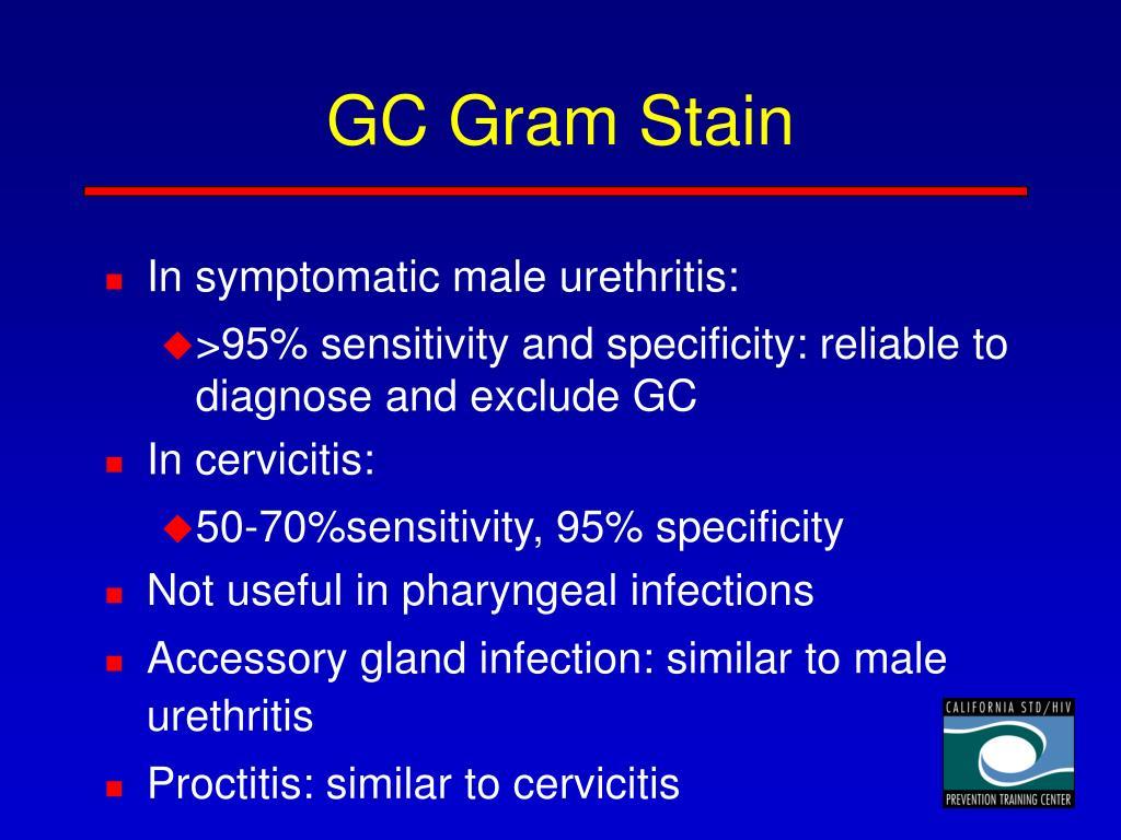 GC Gram Stain
