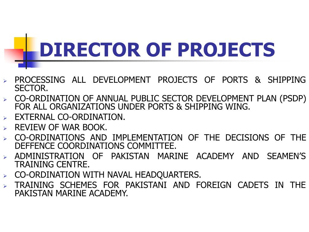 DIRECTOR OF PROJECTS