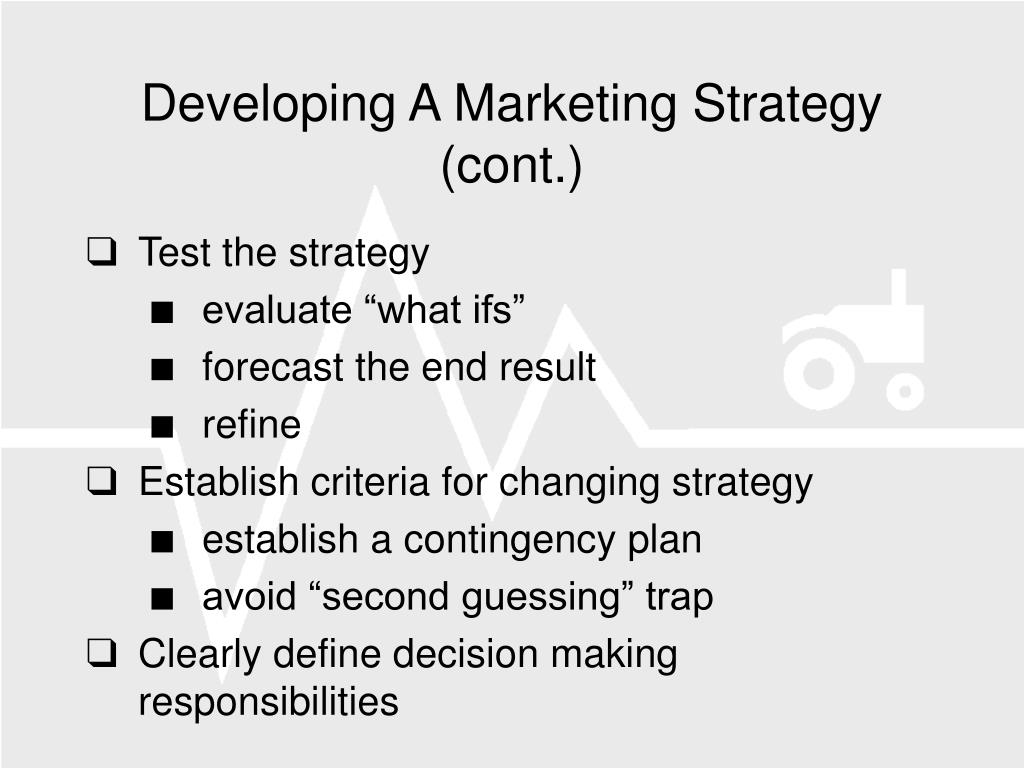 Developing A Marketing Strategy (cont.)