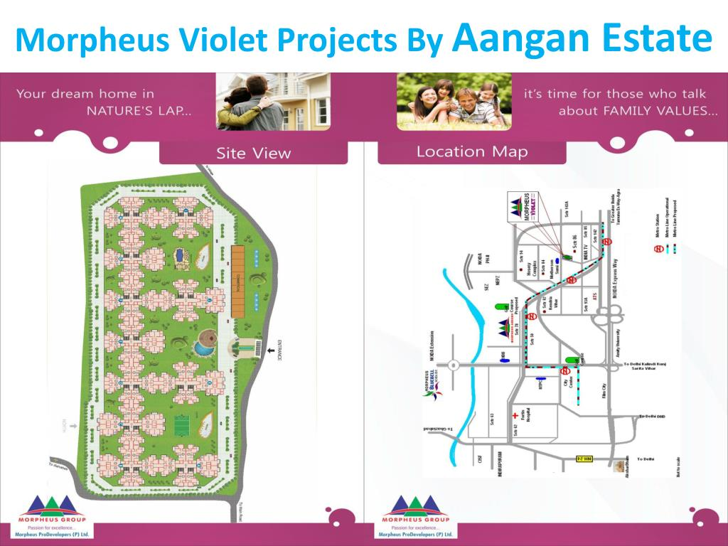 Morpheus Violet Projects By
