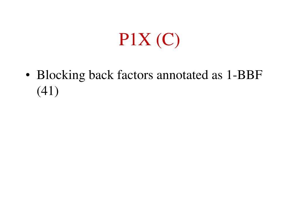 P1X (C)