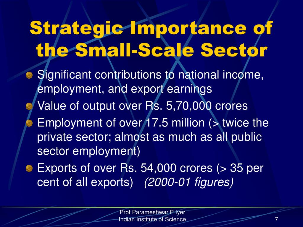 Strategic Importance of the Small-Scale Sector