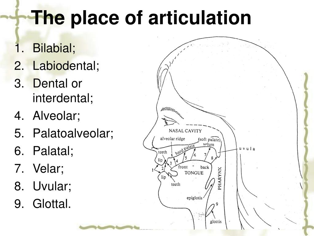 The place of articulation