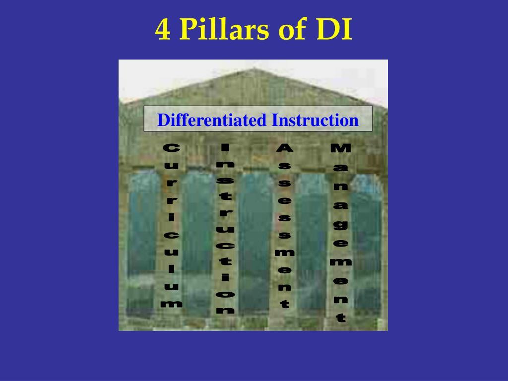 4 Pillars of DI