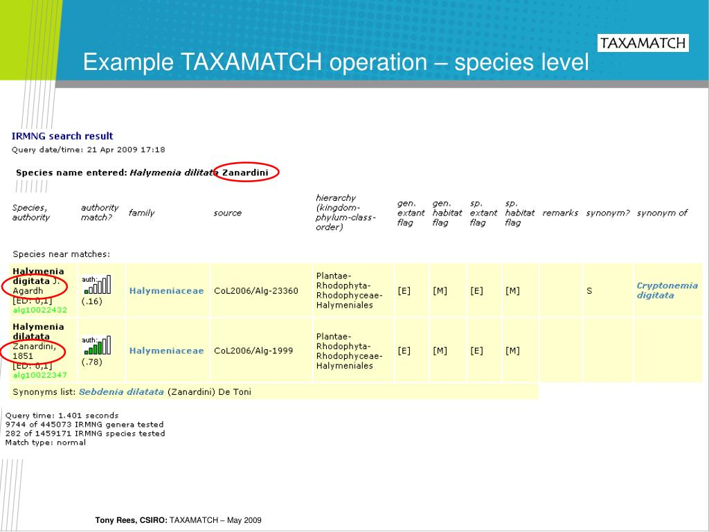 Example TAXAMATCH operation – species level