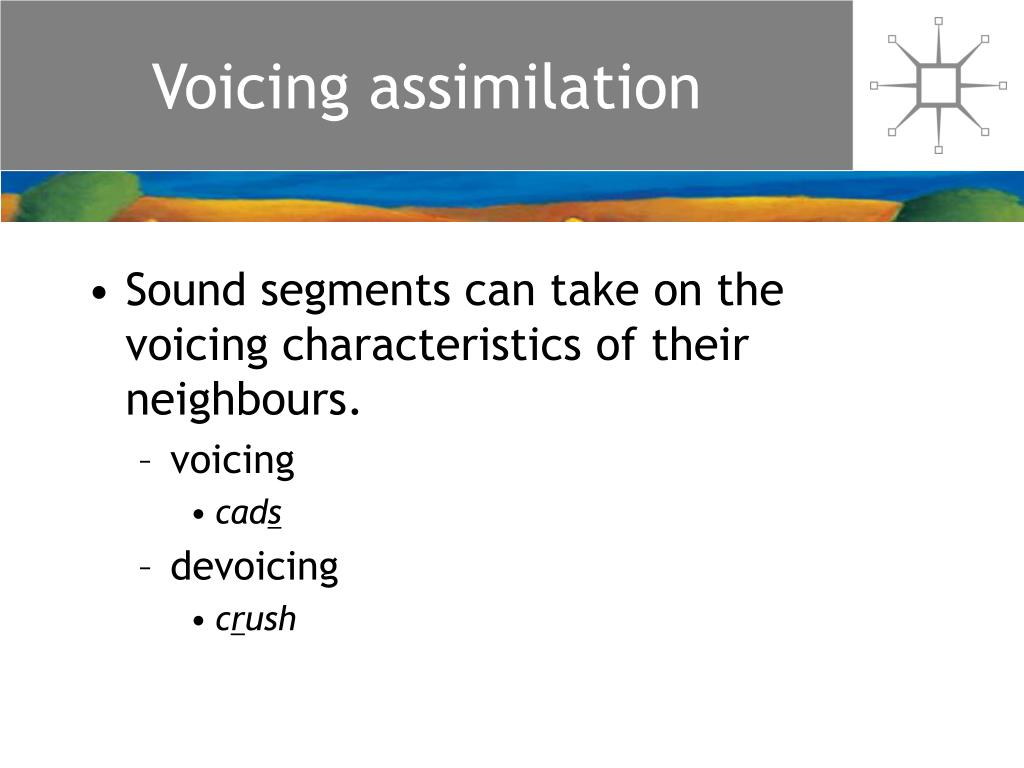Voicing assimilation