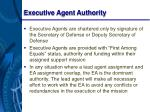 executive agent authority