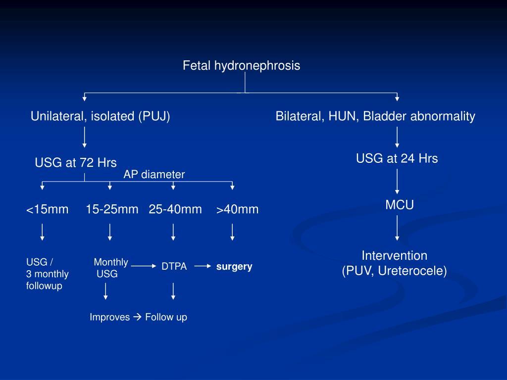 Fetal hydronephrosis