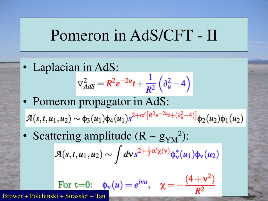 Pomeron in AdS/CFT - II