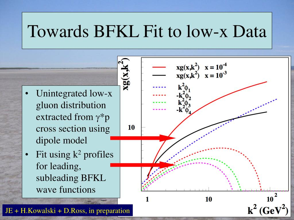 Towards BFKL Fit to low-x Data