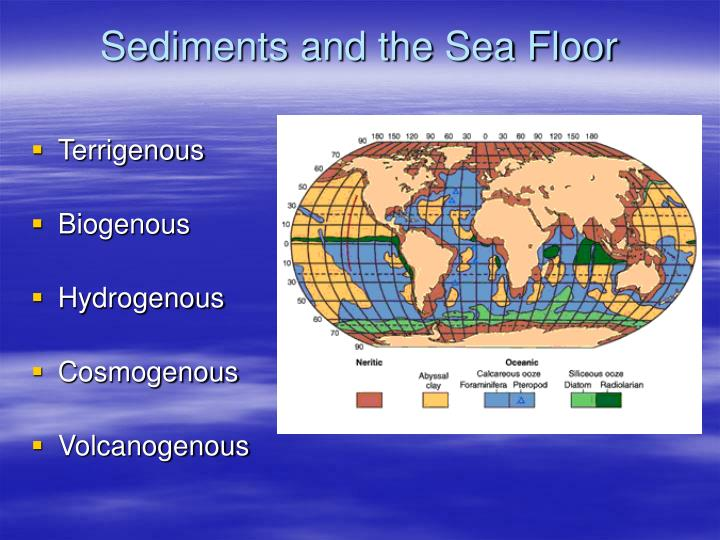 Sediments and the sea floor