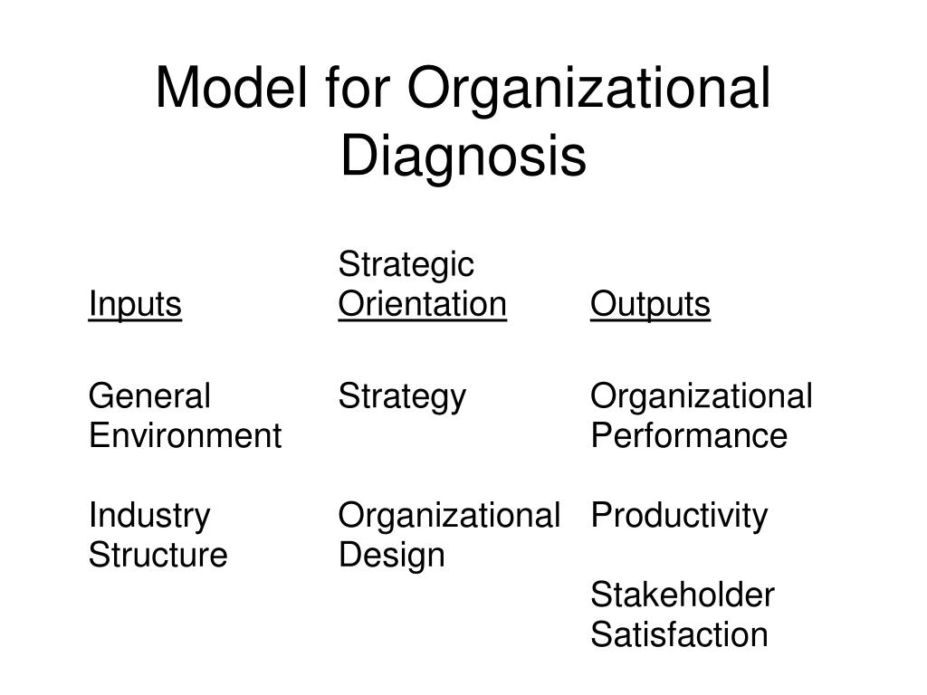 Model for Organizational Diagnosis