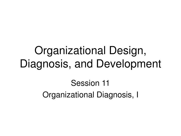 Organizational design diagnosis and development l.jpg