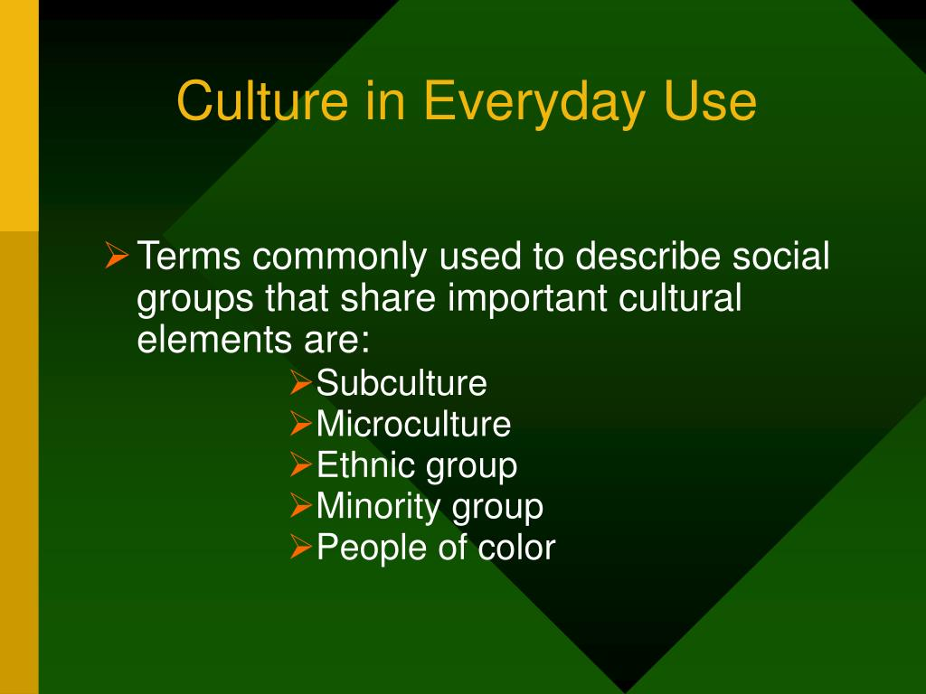 Culture in Everyday Use