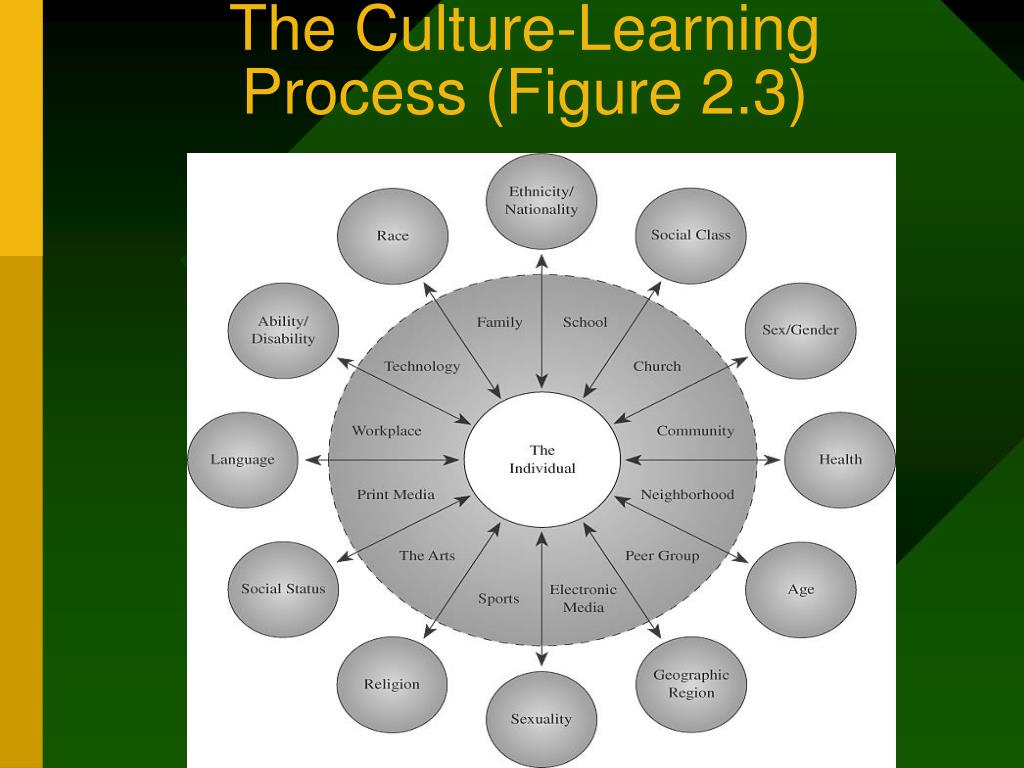 The Culture-Learning Process (Figure 2.3)