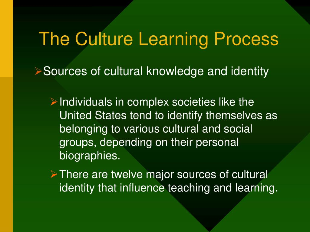 The Culture Learning Process