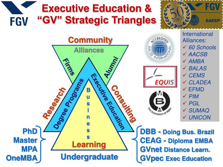 Executive education gv strategic triangles
