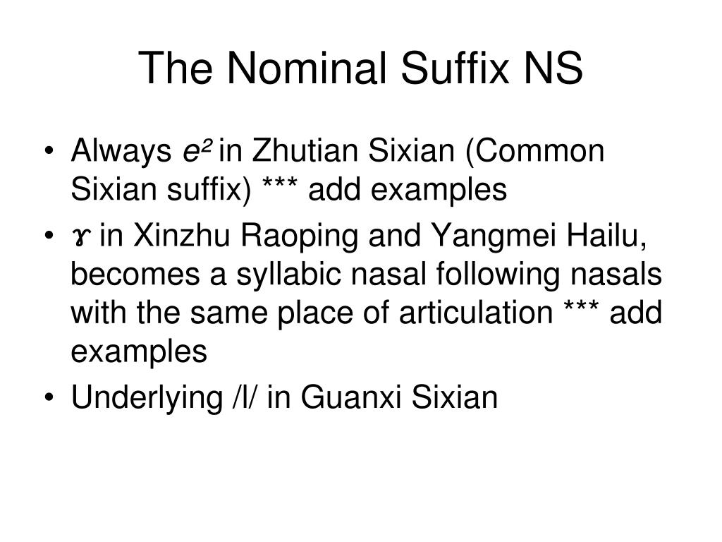 The Nominal Suffix NS
