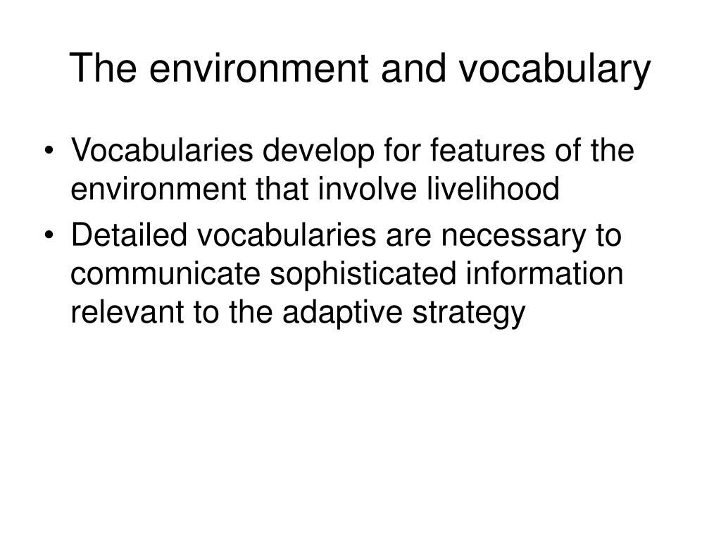 The environment and vocabulary