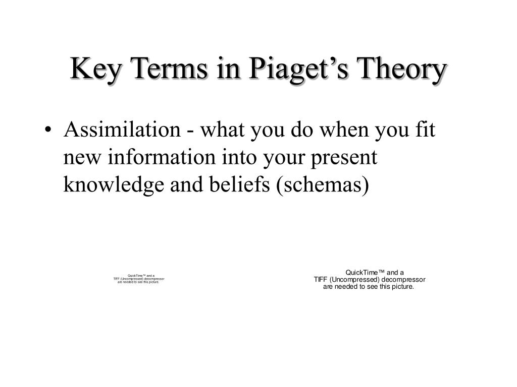 Key Terms in Piaget's Theory