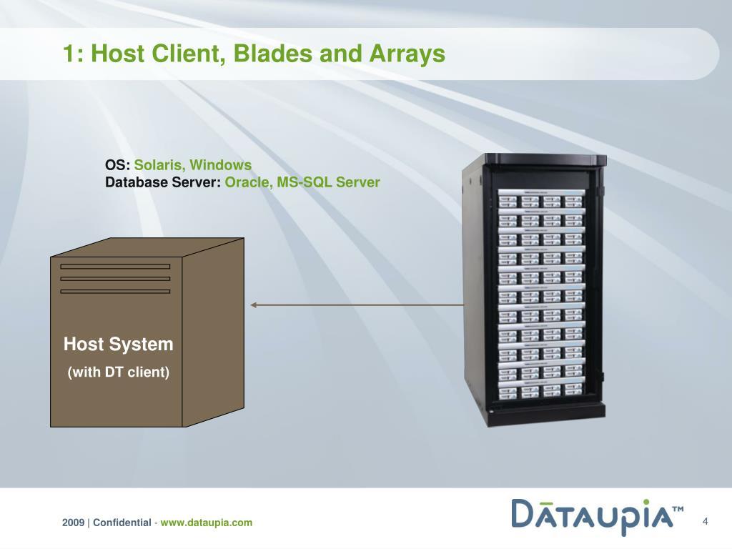 Host System