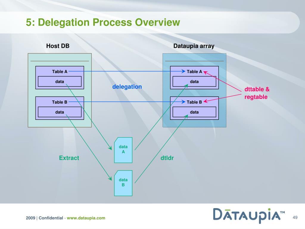 5: Delegation Process Overview