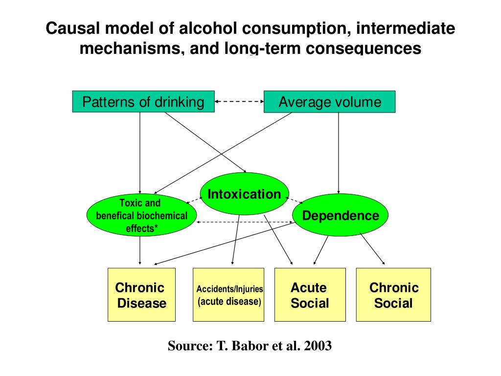Causal model of alcohol consumption, intermediate mechanisms, and long-term consequences