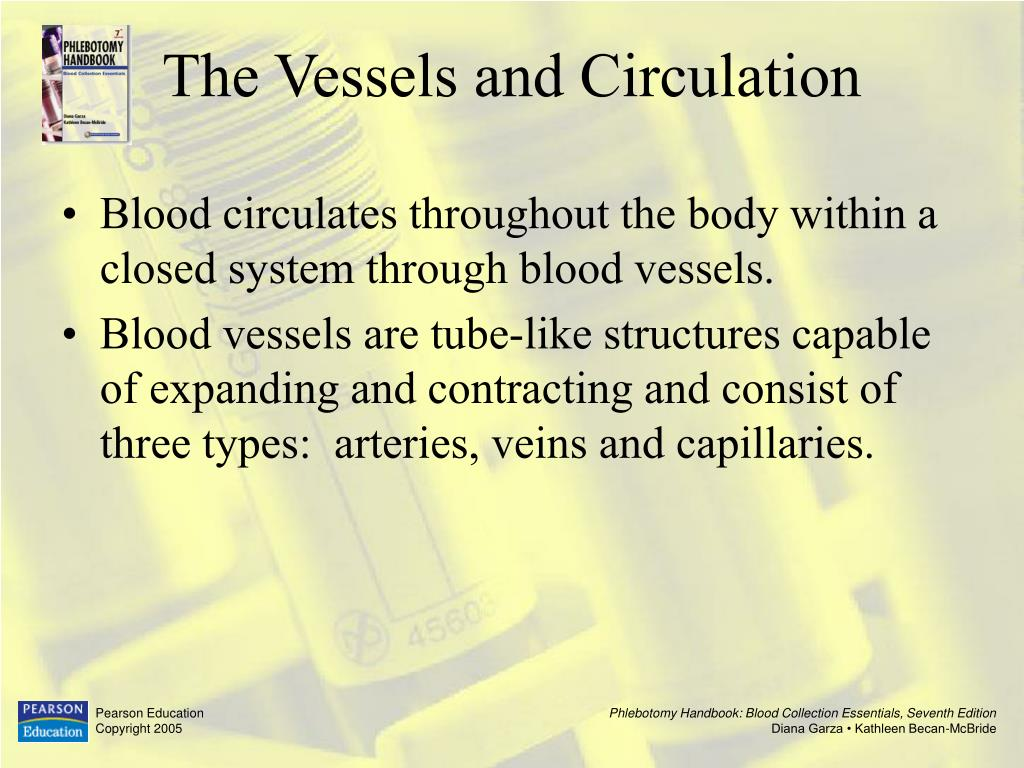 Blood circulates throughout the body within a closed system through blood vessels.