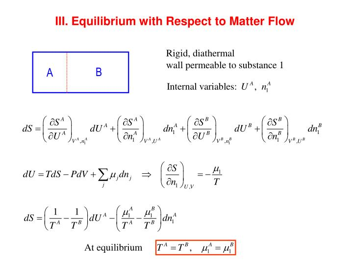III. Equilibrium with Respect to Matter Flow