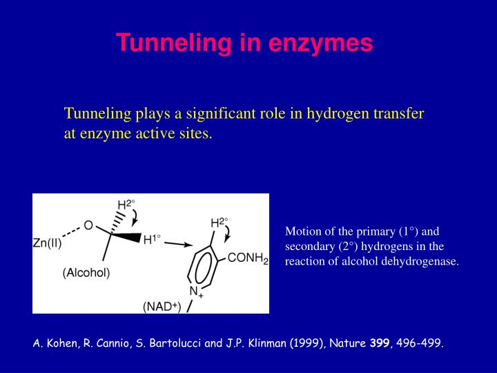 Tunneling in enzymes