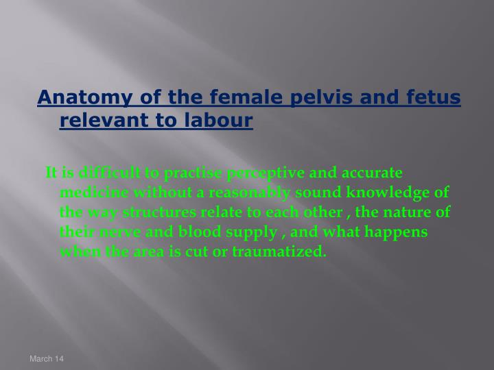 Anatomy of the female pelvis and fetus relevant to labour