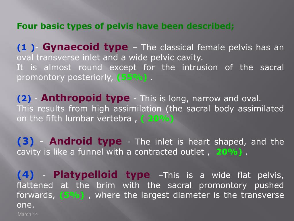 Four basic types of pelvis have been described;