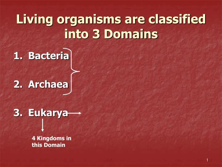 Living organisms are classified into 3 domains l.jpg