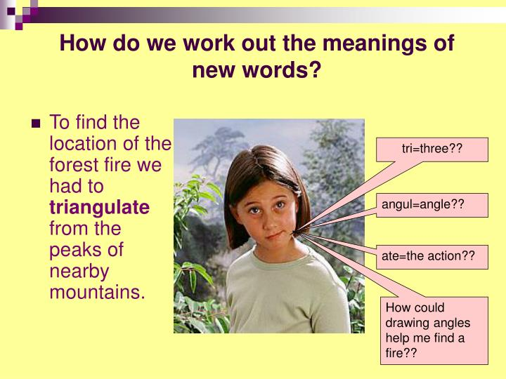 How do we work out the meanings of new words?