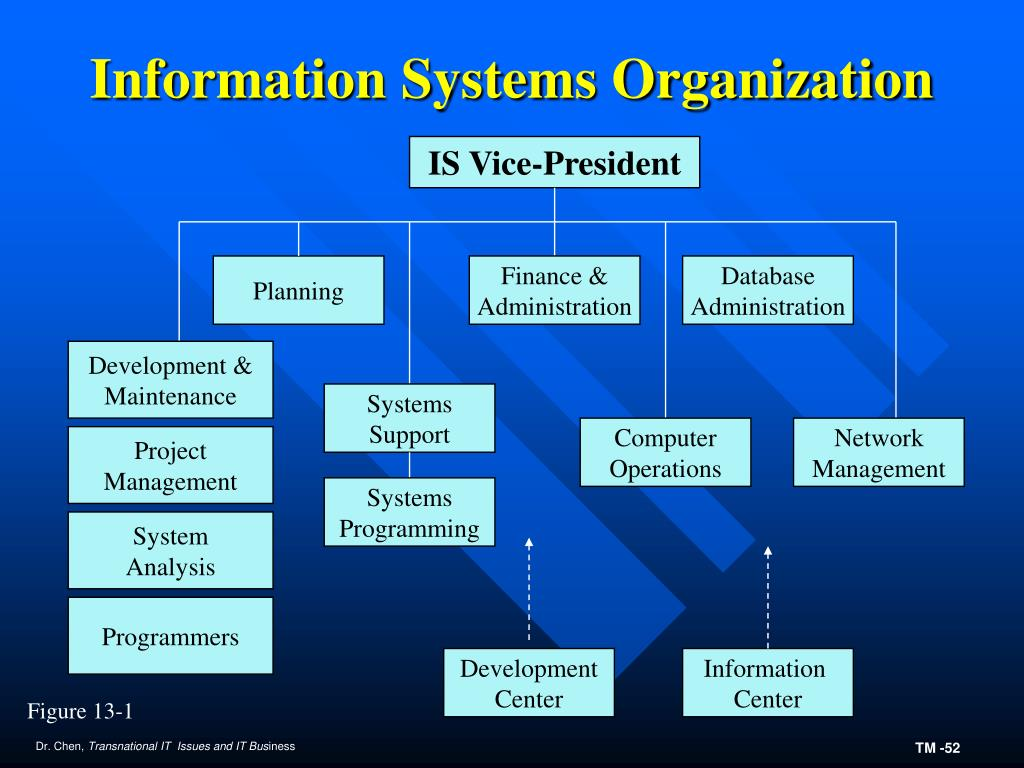 Information Systems Organization