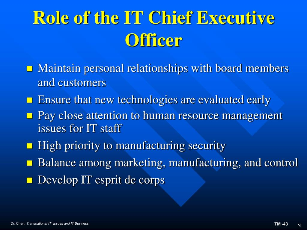 Role of the IT Chief Executive Officer