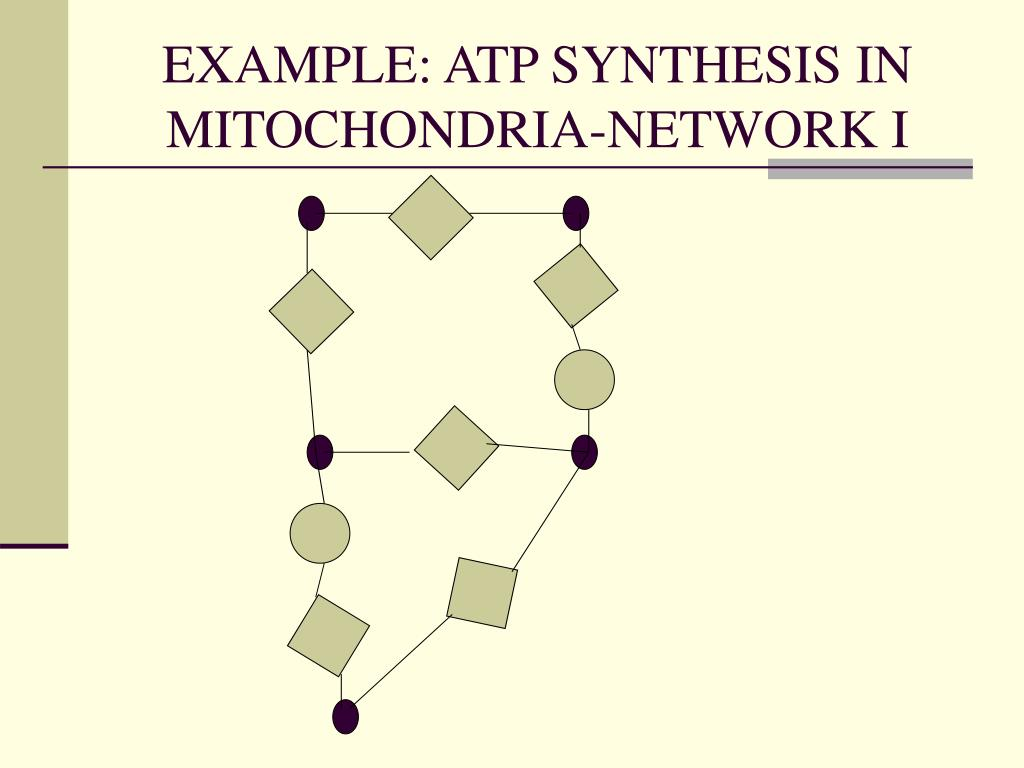 EXAMPLE: ATP SYNTHESIS IN MITOCHONDRIA-NETWORK I