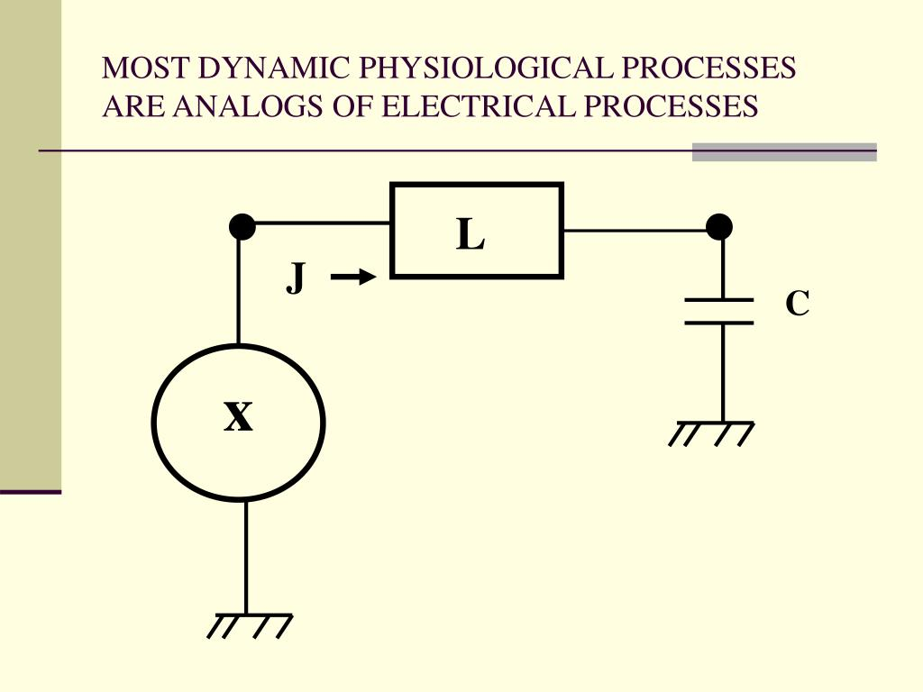 MOST DYNAMIC PHYSIOLOGICAL PROCESSES ARE ANALOGS OF ELECTRICAL PROCESSES