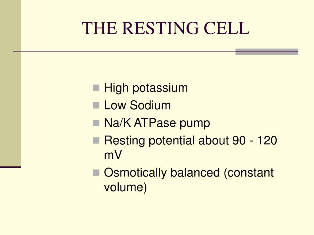 THE RESTING CELL