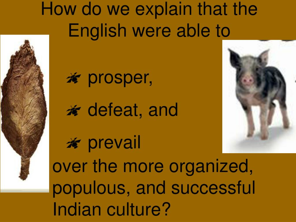 How do we explain that the English were able to
