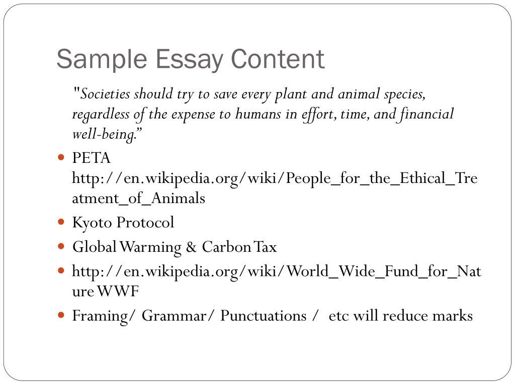 Sample Essay Content