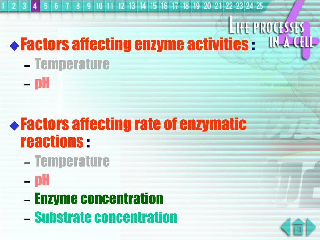 Factors affecting enzyme activities