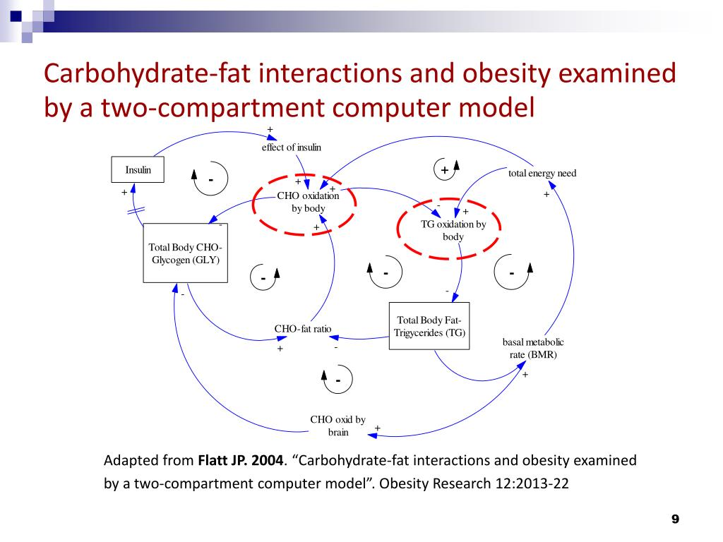 Carbohydrate-fat interactions and obesity examined by a two-compartment computer model