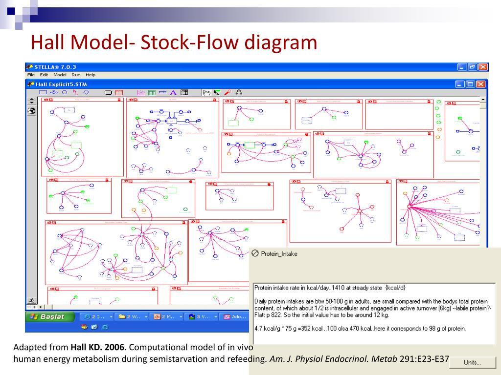 Hall Model- Stock-Flow diagram